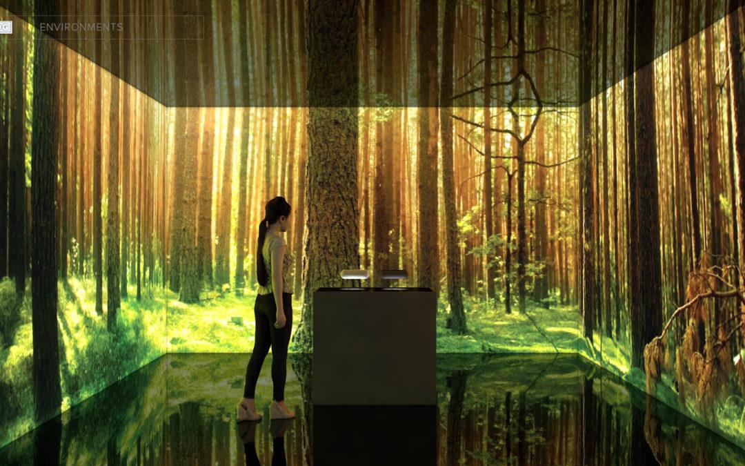 Virtual Reality Spaces